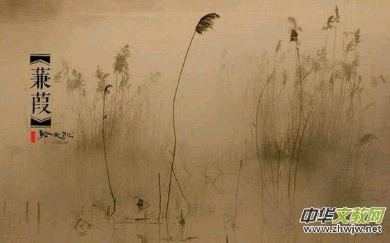 诗经木瓜吟唱杨懿兰