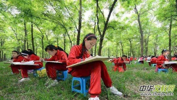 黄河口·孤岛看树