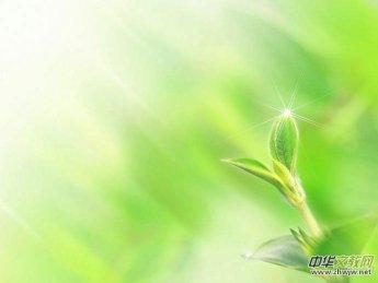 春之声(歌词)